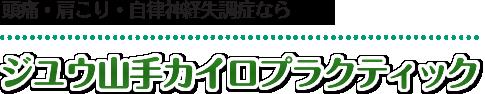 【神戸市東灘区の整体】ジユウ山手整体院:ホーム